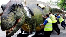 Dinosaurs to arrive at Chester Zoo