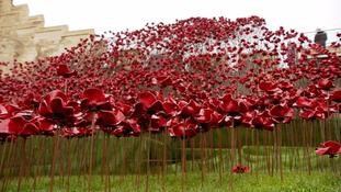 'Iconic' poppies wave goes on display at Lincoln Castle