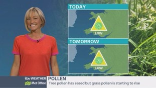 Pollen count: Generally low this weekend!