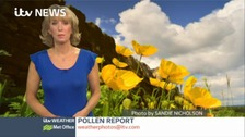 Grass pollen risk is generally low