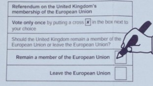 Postal vote guide slammed by angry Brexit campaigners