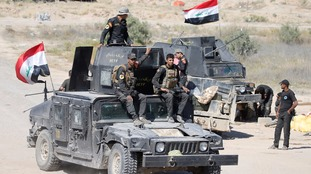 Iraqi security forces gather near Fallujah.