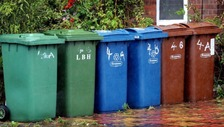 Further complaints about Newcastle's bin collections