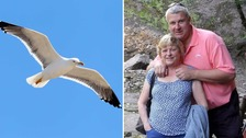 Seagull (left) and (right) Steve Higgins with his partner Julia Thompson
