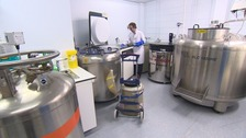 Stem cell storage facility