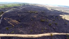 Aerial shot of Woodbury Common after blaze