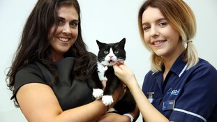 Millie, owner Sarah Douglas and Westway Vets student veterinary nurse Gillian Holmes.