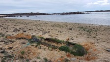 A bomb disposal team was sent to Herm over the weekend after a part of a Second World War torpedo was discovered.
