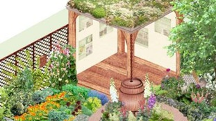 Leeds University Chelsea Flower Show entry