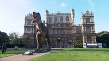 Dinosaurs have taken over Wollaton Hall this weekend in Jurassic Kingdom show
