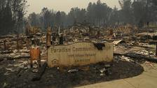 The Camp Fire has destroyed the town of Paradise.