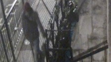 Police search for man who slashed woman's bottom