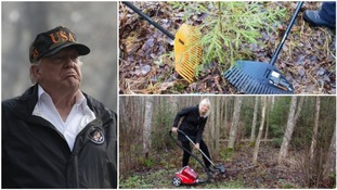 'Rake news': Finnish people bemused after Donald Trump's claim they 'rake forests' to prevent fires