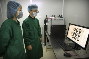 Workers view a time lapse image of embryos on a computer screen at a lab in Shenzhen