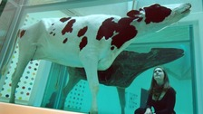 Damien Hirst's 'Mother and Child divided' won him the Turner Prize and a boosted his art career.