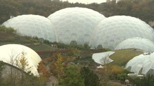 Eden Project closed as heavy rainfall causes flooding