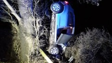 Woman arrested for drink driving after car left up a tree
