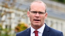 Backstop 'essential' says Coveney