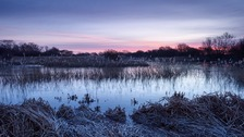 Lincolnshire Wildlife Trust Nature Reserve. LEE BEEL