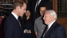 William prepares for live interview with Sir David Attenborough