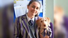 The school dog helping students with mental well-being