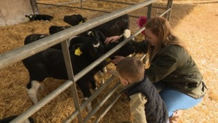 Farmer Jennifer Down and her son petting calves