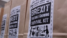 The business selling a Brexit vegetable survival kit