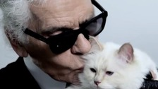 Could Karl Lagerfeld's cat get her paws on his £150m fortune?