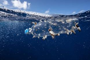 Plastic pollution is one of the problems facing the world's oceans