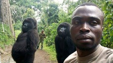 Gorillas pose for incredible selfie with anti-poaching workers