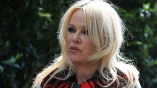 Pamela Anderson declared her love for Assange and defended him with great passion.