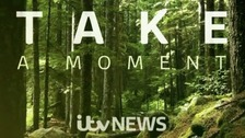 'Take a moment' for Mental Health Awareness Week