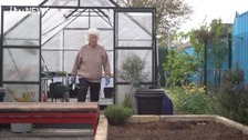 Dena Murphy, 90, in her allotment in Manchester