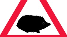 New traffic sign highlights drive to save 'precious' creatures