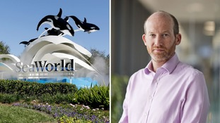 SeaWorld hits back at Virgin after firm stops selling tickets to theme park