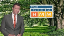 The latest pollen forecast for Charlie Powell.