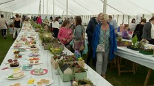 North show, people looking at cakes and flowers