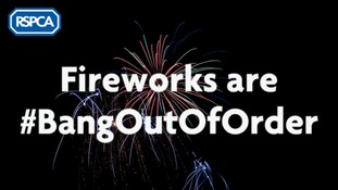 An image of fireworks in a dark night sky. Over the fireworks is the text Fireworks are #BangOutOfOrder in a white font
