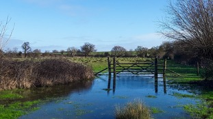 A wet February in the Anglia region but not a record-breaker