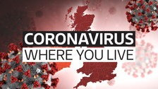 Check coronavirus cases in your area with our interactive map