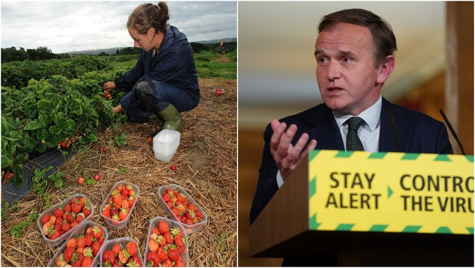 George Eustice (R) wants Britons to join the fruit picking effort this summer.