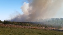 Large forest fire near Haydon Bridge in Northumberland