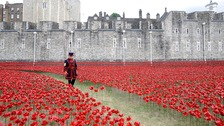 Yeoman Serjeant Bob Loughlin walks through a mass of ceramic poppies at the Tower of London.