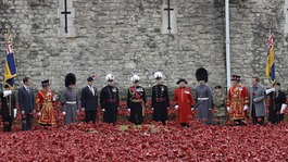 Public honour the fallen during Armistice Day events