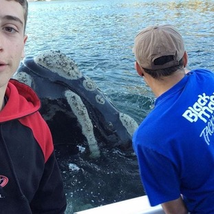 Michael Riggio, 17, (left) took selfies with the whale while his friend Ivan Iskenderian took the bag off the creature