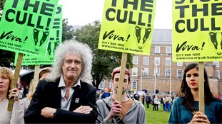 Brian May taking part in a protest in Bristol against the badger cull