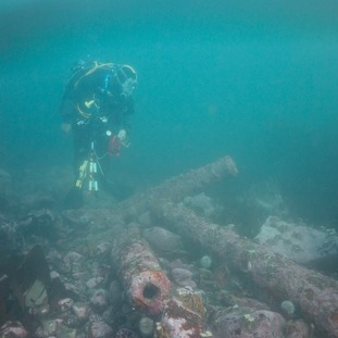 Underwater images and video showing dives on the Gun Rocks project.