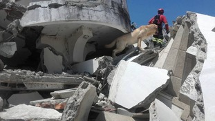Dayko spent days searching for earthquake survivors and rescued seven people.