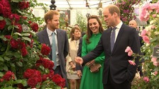 Duke and Duchess of Cambridge and Prince Harry at the Chelsea Flower Show.